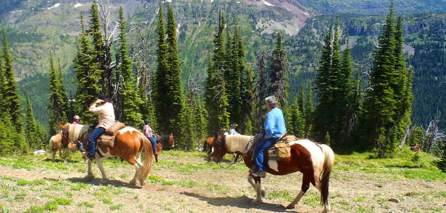 Fishing & Horseback Trail Riding Combinations