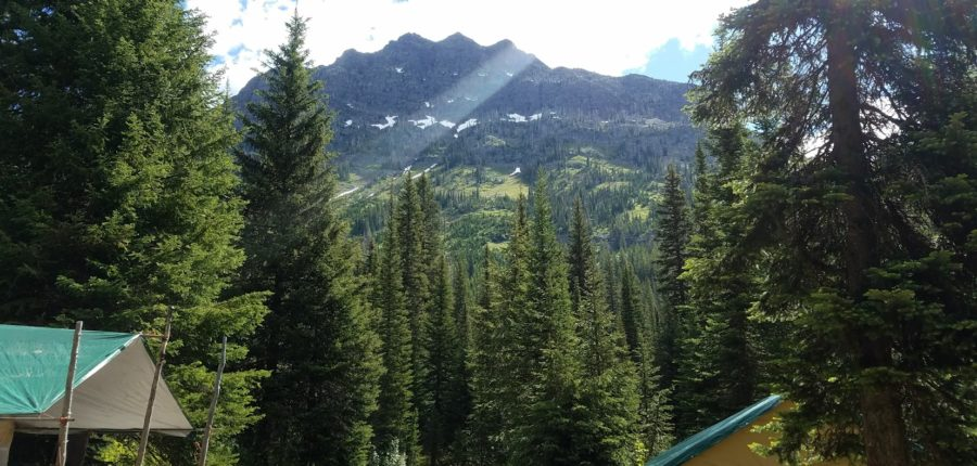 Guided Montana Wilderness Pack Trips