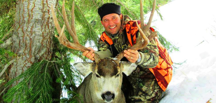 Montana Guided Mule Deer Hunting