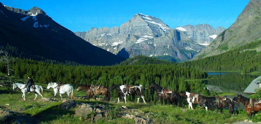 Glacier National Park Trail Rides