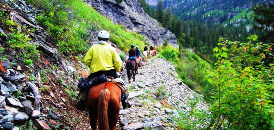 Swan Valley Horseback Trail Rides & Wagon Ride