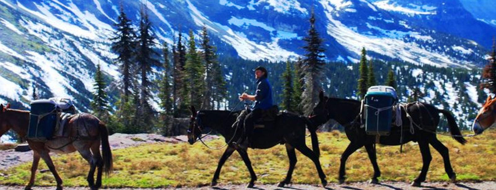 Montana Wilderness Pack Trips | Horseback Trail Riding