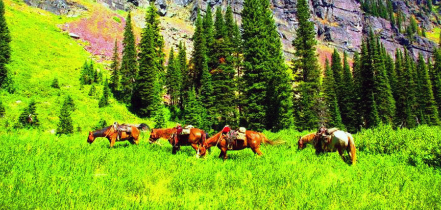 Three Day Weekend Horseback Pack Trip