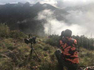 Montana public land guided hunts glassing the ridge