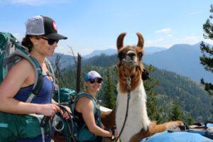Four day llama trrek